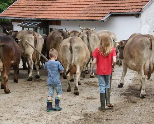 Bauernhofurlaub