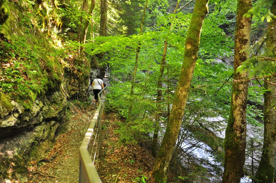 Wanderweg-Starzlach