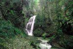 Wasserfall Niedersonthofen